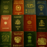 travel document forgery network
