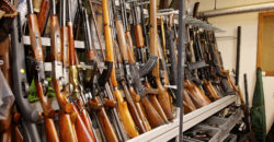 Queensland police seize almost 900 firearms