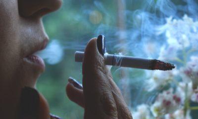 modern-day cigarette bootlegging gang