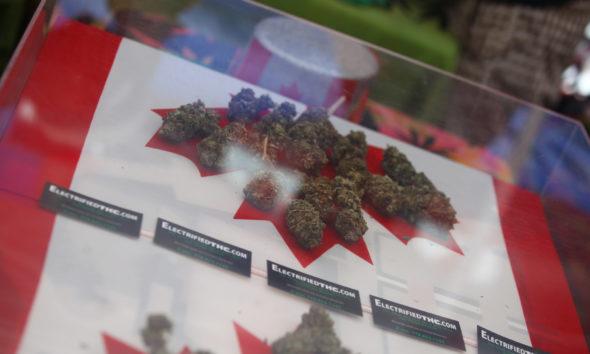 pardon minor cannabis possession convictions
