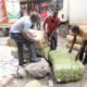 global food fraud crackdown