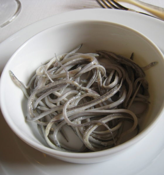 Traffic warns of rise in international trafficking of glass eels