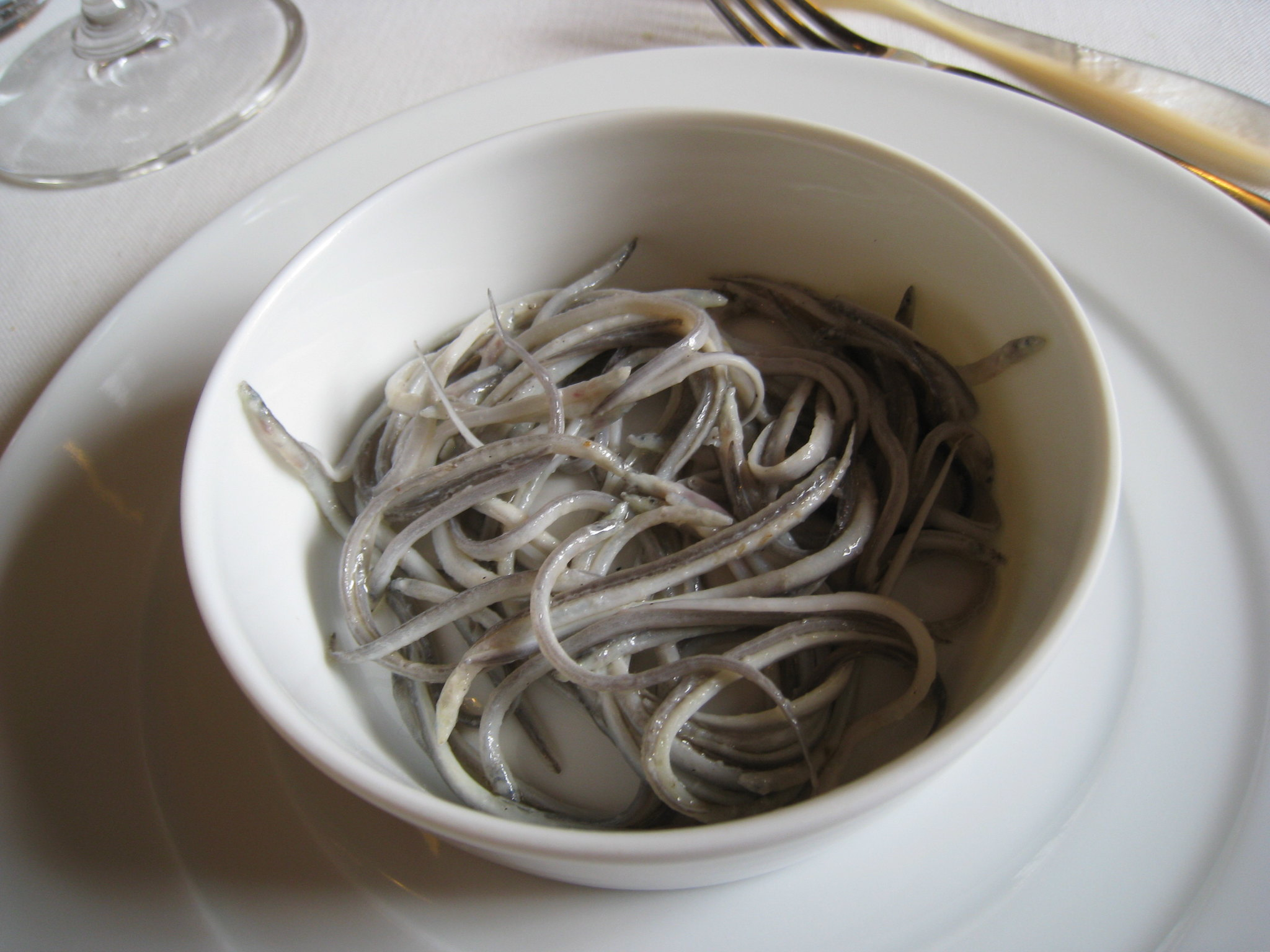 NGO Traffic warns of rise in international trafficking of glass eels - Illicit Trade