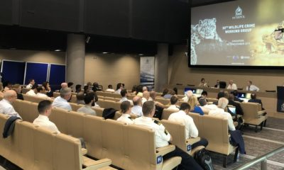 conference on wildlife crime