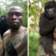selfie-gorille-RDC